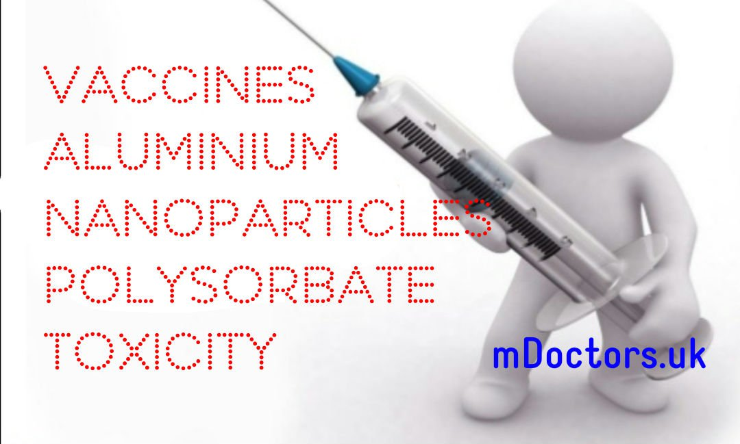 Aluminium, Vaccines, Nanoparticles, Polysorbate and Toxicity